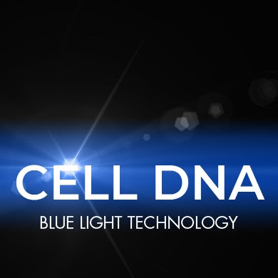 CELL DNA